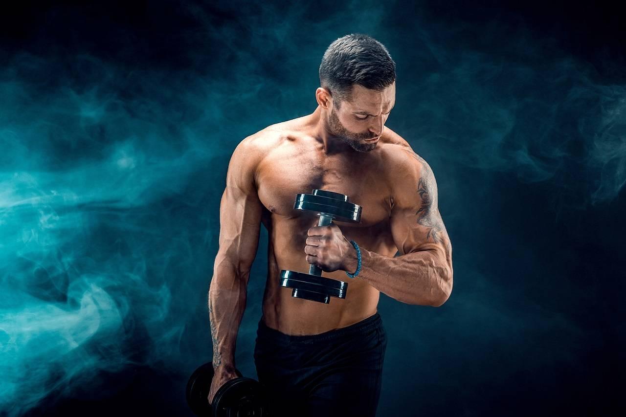 Eine positive Muskelproteinbilanz erreichen: Der Synergismus von Krafttraining & Protein