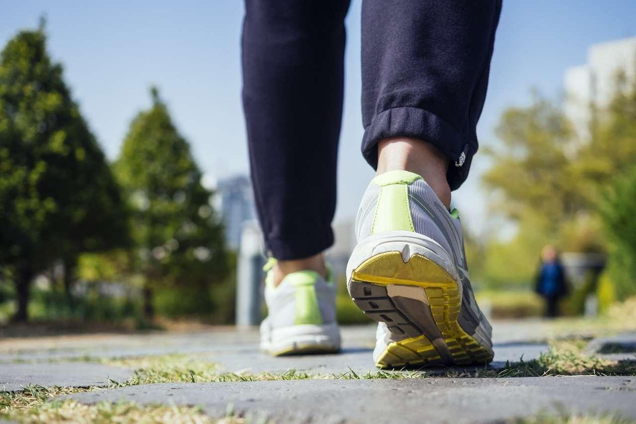 Low Carb High Fat optimiert Fettverbrennung, aber verschlechtert die Leistung