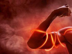 Stickoxid (NO): Wirkung, Funktion & Rolle beim Muskelaufbau – Teil 1