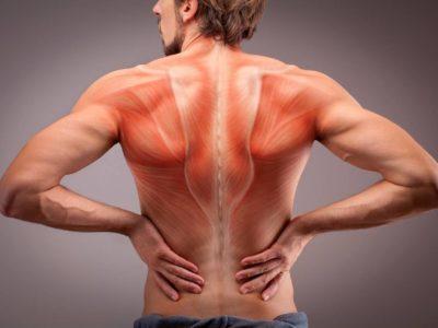 Kraftttraining zur Behandlung unspezifischer Rückenschmerzen | Studien Review