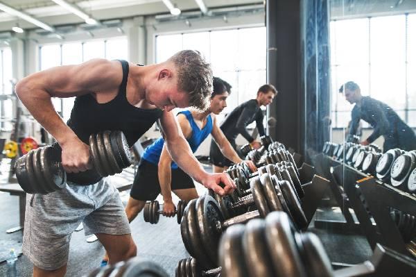 Muskelaufbautraining mit und ohne Whey Isolat - wie stark profitieren Trainingsanfänger? | Studien Review