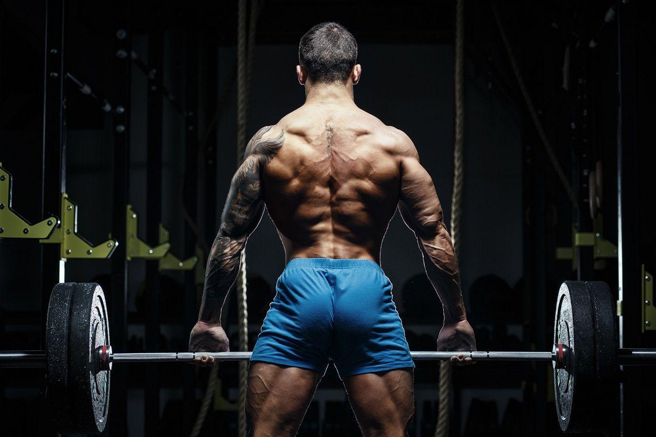 "Krafttraining 101 – ""Bodybuilding & Hypertrophy""-Programme – Teil 4: Holistisches Training, German Volume Training, Pürzel I & Pürzel II"
