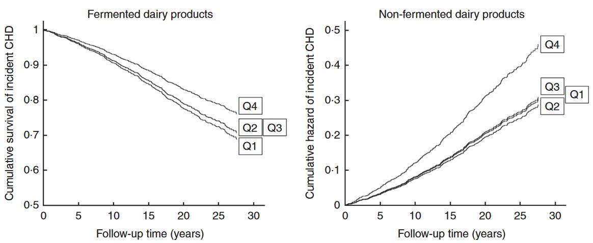 Schützen fermentierte Milchprodukte vor koronaren Herzerkrankungen?