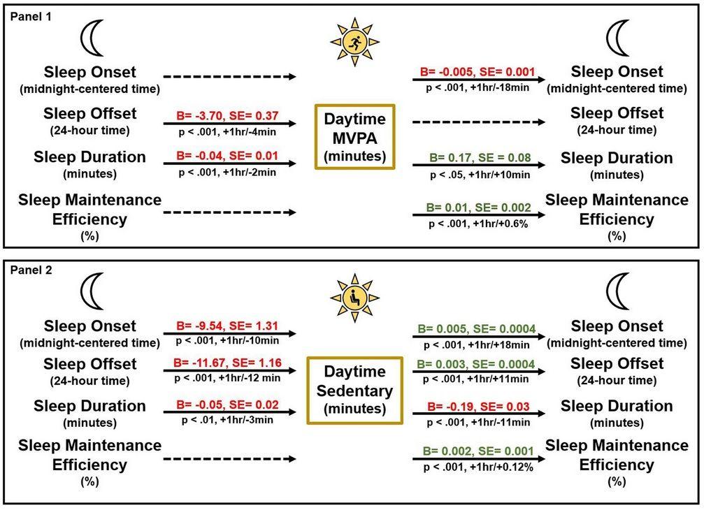 Temporäre Assoziationen zwischen nächtlichen Schlafvariablen und moderarte bis starke körperliche Aktivität (MVPA) in Minuten bei Tag (Panel 1) und Sitzverhalten am Tag (Panel 2). Panel 1: Verzögerte Dauer bis zum Einschlafen und längere Schlafdauer waren mit weniger körperlicher Aktivität (MVPA) am nächsten Tag verbunden (p < 0,001). Mehr körperliche Aktivität (MVPA) war mit einem früher einsetzenden Schlafbeginn (p < 0,001), einer längeren Schlafdauer (p < 0,05) und einer höheren Effizienz der Schlafqualität (p < 0,001) verbunden. Panel 2: Nächte mit früherem Schlafbeginn (p < 0,001), früherem Einschlafen (p < 0,001) und kürzerer Schlafdauer (p < 0,01) waren mit einem höheren Sitzverhalten am nächsten Tag verbunden. Ein höheres Sitzverhalten am Tag war mit einem späteren Schlafbeginn (p < 0,001), einem späteren Einschlafen (p < 0,001), einer kürzeren Schlafdauer (p < 0,001) und einer höheren Effizienz der Schlafqualität (p < 0,001) in dieser Nacht verbunden. Die Ergebnisse wurden um Kovariablen bereinigt, einschließlich Geschlecht, Alter, Bildung der Mutter, Familienstruktur, Haushaltseinkommen bis zur nationalen Armutsgrenze und Altersperzentil-Körpermassenindex.