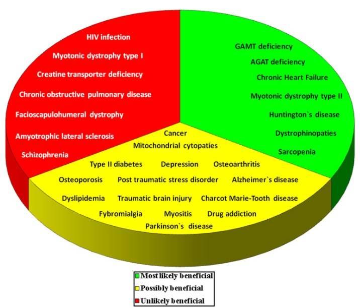 """Erkrankungen und Zustände, bei denen eine Creatin-Supplementation """"höchstwahrscheinlich vorteilhaft"""" (grün = """"positive"""" Ergebnisse aus einer oder mehreren qualitativ hochwertigen, randomisierten, kontrollierten Studien mit großer Stichprobe); """"möglicherweise vorteilhaft"""" (gelb = begrenzte Beweise aus In-vitro-, Tier- und Nicht-Human-Studien mit geringer Stichprobengröße oder aus randomisierten Humanstudien, die auf widersprüchliche Ergebnisse hindeuten); oder """"unwahrscheinlich vorteilhaft"""" (rot; """"negative"""" Ergebnisse aus einer oder mehreren qualitativ hochwertigen, randomisierten, kontrollierten Studien mit großer Stichprobe) wäre"""
