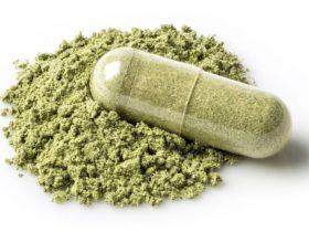 Gewichtsreduktion durch Grüntee-Supplemente: Wie effektiv sind EGCG & Co.?