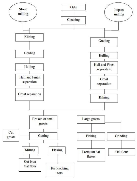 Vom Korn bis zur Flocke (oder Mehl): Diese Verarbeitungsschritte durchläuft der Hafer, bis er schließlich bei uns in der Schüssel landet. (Bildquelle: Rasane et al., 2013)