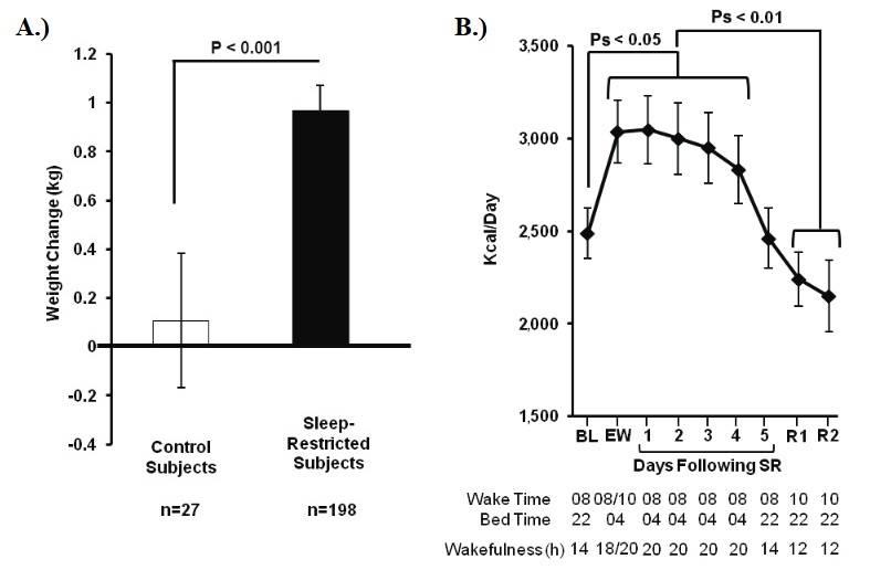 Auswirkung von Schlafentzug auf die Gewichtszunahme & Kalorienzufuhr: A.) Personen mit Schlafentzug nahmen signifikant mehr Gewicht zu, als Kontrollpersonen (d= 0,51). B.) Probanden mit eingeschränktem Schlaf verzehrten signifikant mehr Kalorien an Tagen, an denen die Schlafenszeit (Bed Time) auf 04:00 Uhr verschoben wurde (EW-SR4), verglichen mit Tagen, an denen die Schlafenszeit bei 22:00 Uhr lag (BL, R1-2). Die Kalorienaufnahme unterschied sich nicht zwischen BL und SR5 (wenn die Wachzeiten  gleich waren und die Schlafenszeit bei 22:00 Uhr lag). Zudem unterschied sich die Kalorienzufuhr nicht zwischen BL und jedem Erholungstag (R1-2). Bei den Probanden handelte es sich um gesunde Erwachsene im Alter von 22-50 Jahren und einem BMI zwischen 19-30. (Bildquelle: Spaeth et al., 2013)